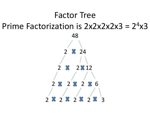 Integer factorization calculator