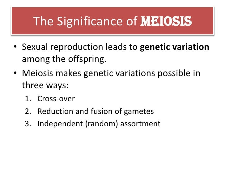 What is the significance of meiosis to sexual reproduction pics 57
