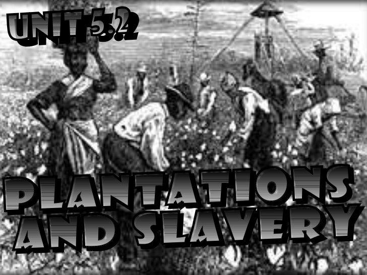 UNIT 5.2 PLANTATIONS AND SLAVERY