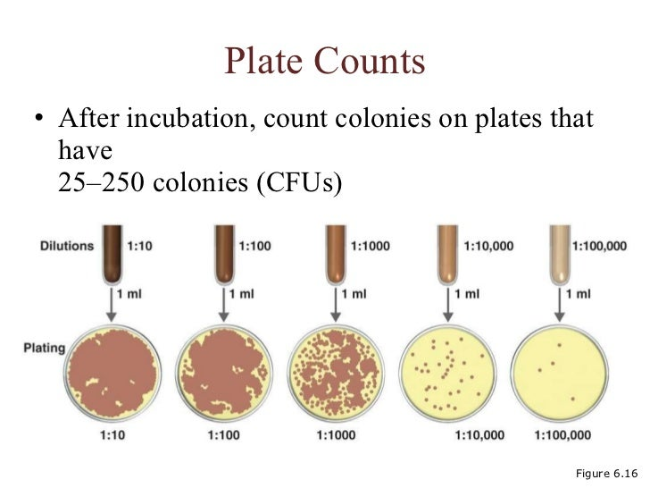 aerobic plate count apc and total Indication of the general load of aerobic and facultative anaerobic bacteria of a water sample this indicator is also known as standard plate count (spc), aerobic plate count (apc) and total plate count (tpc) the total coliform group is a large collection of bacteria that are mostly found.