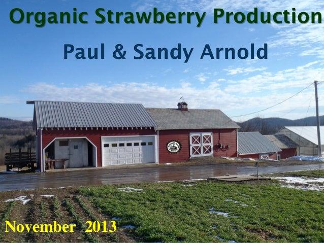 Organic Strawberry Production Paul & Sandy Arnold  November 2013