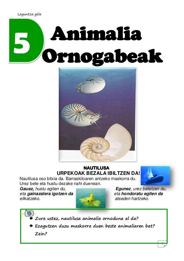 Laguntza gela5                Animalia                Ornogabeak                                 NAUTILUSA                ...