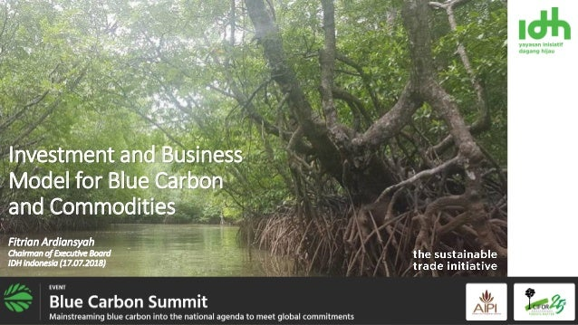 Investment and Business Model for Blue Carbon and Commodities Fitrian Ardiansyah Chairman of Executive Board IDH Indonesia...