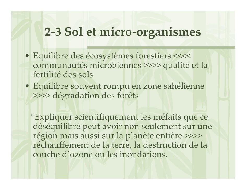 2‐3Soletmicro‐organismes • Equilibredesécosystèmesforestiers<<<<   communautésmicrobiennes>>>>qualité etla   ...