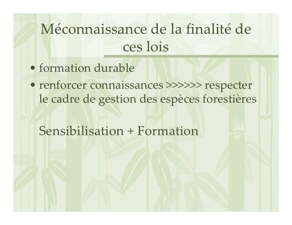 Méconnaissancedelafinalité de              ceslois • formationdurable • renforcerconnaissances>>>>>>respecter ...