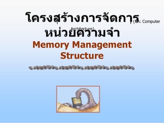|                   | (CA: Computer        Architecture)Memory Management    Structure