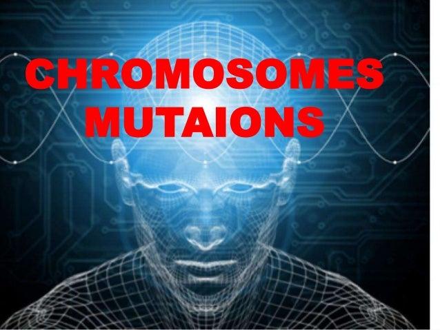CHROMOSOMESMUTAIONS