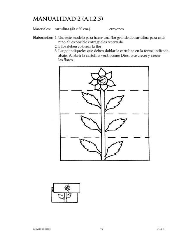5. dios hizo las plantas
