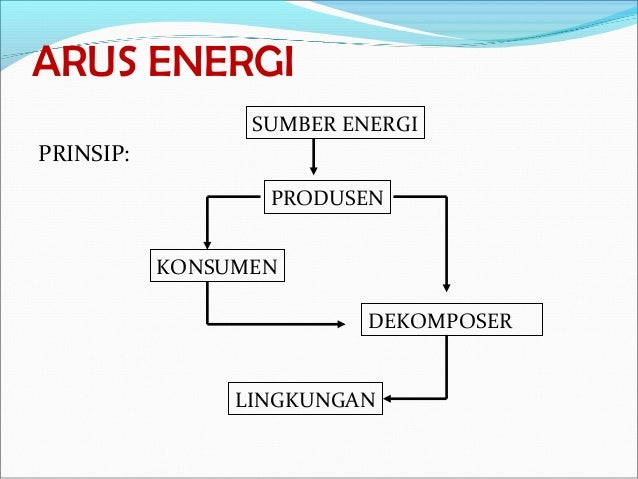 5 Ekosistem Dan Interaksi