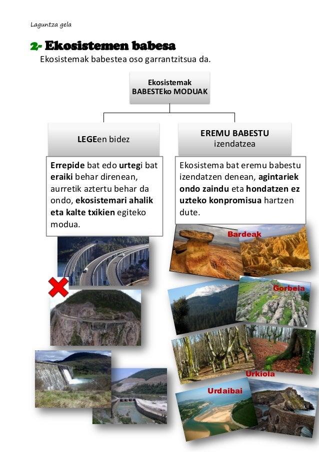 Laguntza gela  2- Ekosistemen babesa Ekosistemak babestea oso garrantzitsua da. Ekosistemak BABESTEko MODUAK  LEGEen bidez...