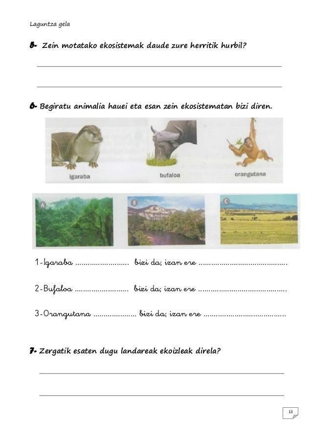 Laguntza gela  5-  Zein motatako ekosistemak daude zure herritik hurbil?  6- Begiratu  animalia hauei eta esan zein ekosis...