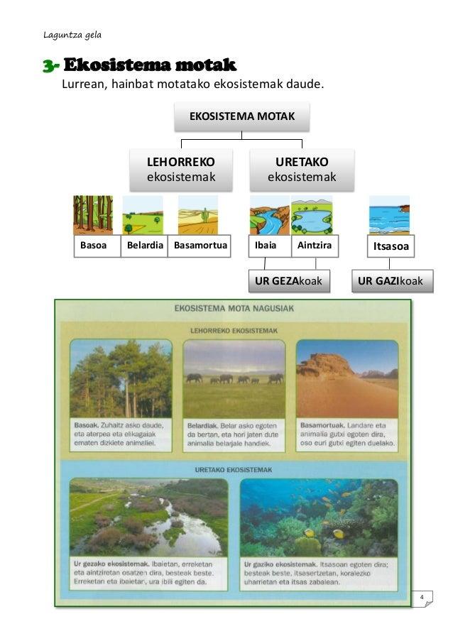 Laguntza gela  3- Ekosistema motak Lurrean, hainbat motatako ekosistemak daude. EKOSISTEMA MOTAK  LEHORREKO ekosistemak  B...