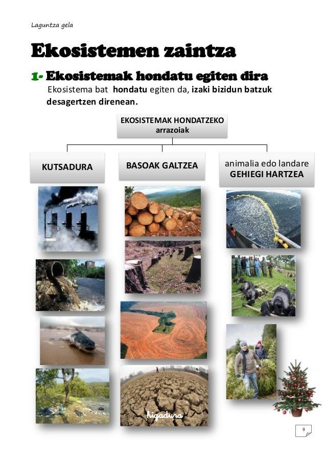 Laguntza gela  Ekosistemen zaintza 1- Ekosistemak hondatu egiten dira Ekosistema bat hondatu egiten da, izaki bizidun batz...