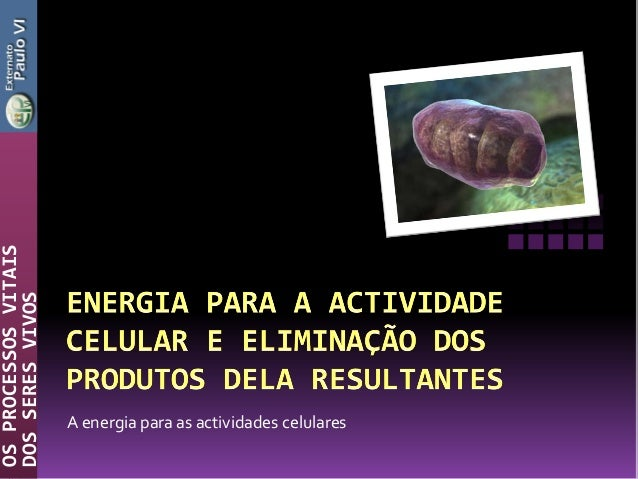 A energia para as actividades celularesOSPROCESSOSVITAISDOSSERESVIVOS