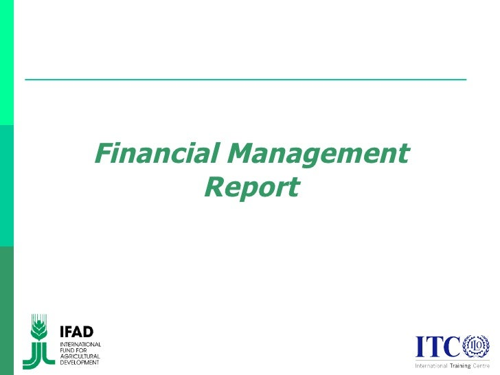how to write a financial report