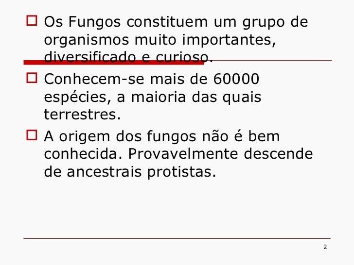 <ul><li>Os Fungos constituem um grupo de organismos muito importantes, diversificado e curioso. </li></ul><ul><li>Conhecem...