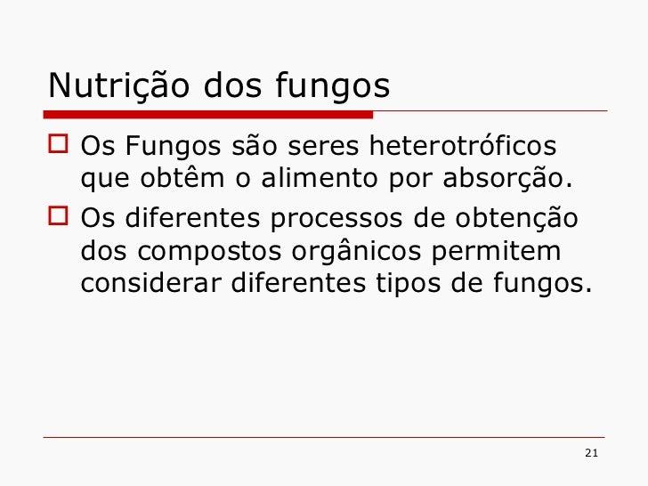 Nutrição dos fungos <ul><li>Os Fungos são seres heterotróficos que obtêm o alimento por absorção. </li></ul><ul><li>Os dif...