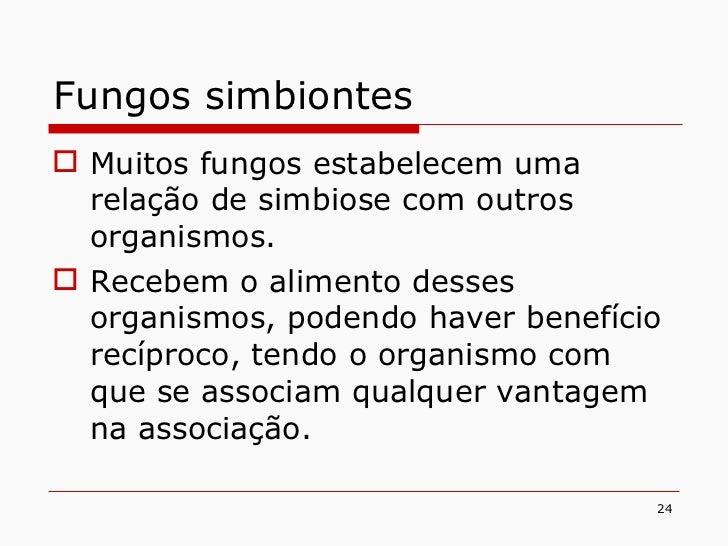 Fungos simbiontes <ul><li>Muitos fungos estabelecem uma relação de simbiose com outros organismos. </li></ul><ul><li>Receb...