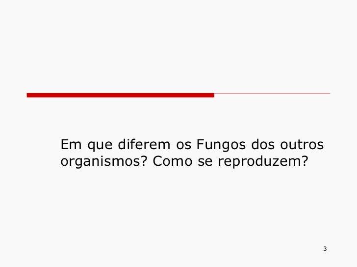 Em que diferem os Fungos dos outros organismos? Como se reproduzem?