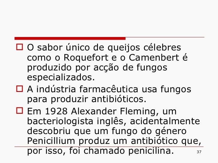 <ul><li>O sabor único de queijos célebres como o Roquefort e o Camenbert é produzido por acção de fungos especializados. <...