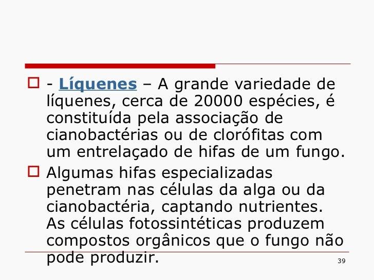 <ul><li>-  Líquenes  – A grande variedade de líquenes, cerca de 20000 espécies, é constituída pela associação de cianobact...