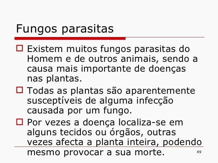 Fungos parasitas <ul><li>Existem muitos fungos parasitas do Homem e de outros animais, sendo a causa mais importante de do...
