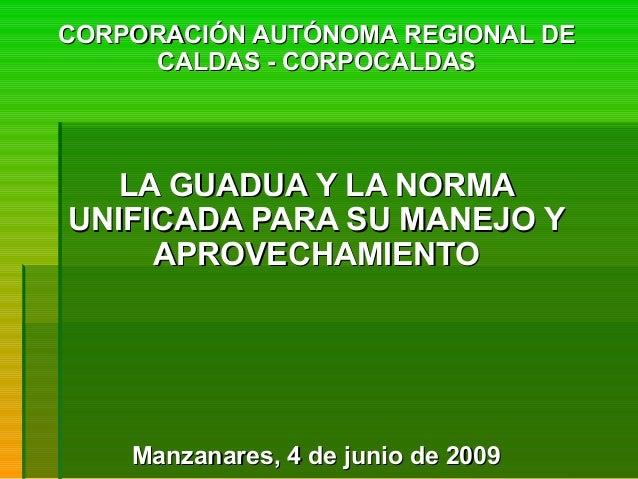 CORPORACIÓN AUTÓNOMA REGIONAL DECORPORACIÓN AUTÓNOMA REGIONAL DE CALDAS - CORPOCALDASCALDAS - CORPOCALDAS LA GUADUA Y LA N...