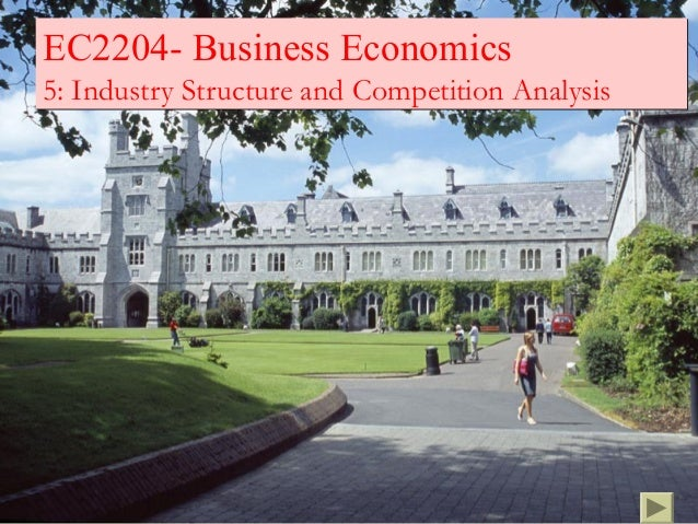 EC2204- Business Economics5: Industry Structure and Competition Analysis
