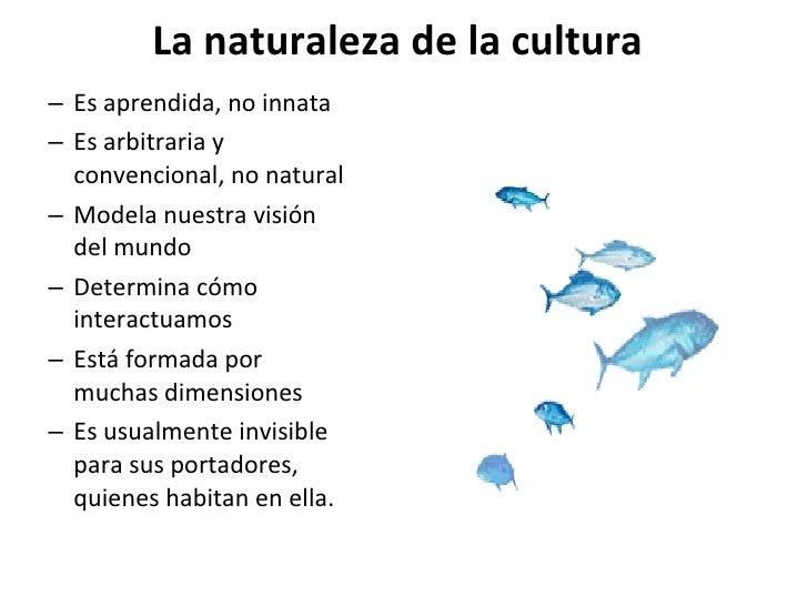 La naturaleza de la cultura <ul><ul><li>Es aprendida, no innata </li></ul></ul><ul><ul><li>Es arbitraria y convencional, n...