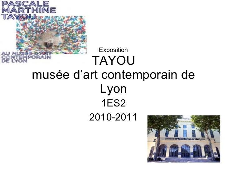Exposition TAYOU musée d'art contemporain de Lyon 1ES2 2010-2011