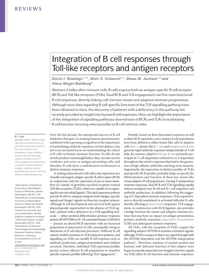 REVIEWS                                    Integration of B cell responses through                                    Toll...
