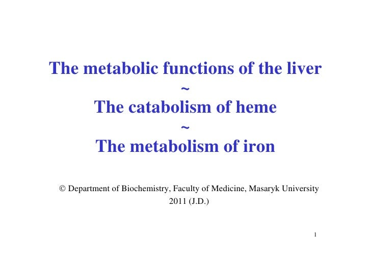 The metabolic functions of the liver                ~     The catabolism of heme                ~     The metabolism of ir...