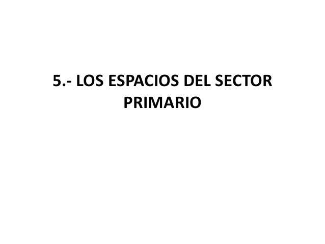 5.- LOS ESPACIOS DEL SECTOR PRIMARIO