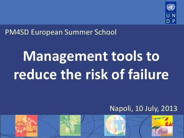 PM4SD European Summer School Management tools to reduce the risk of failure Napoli, 10 July, 2013