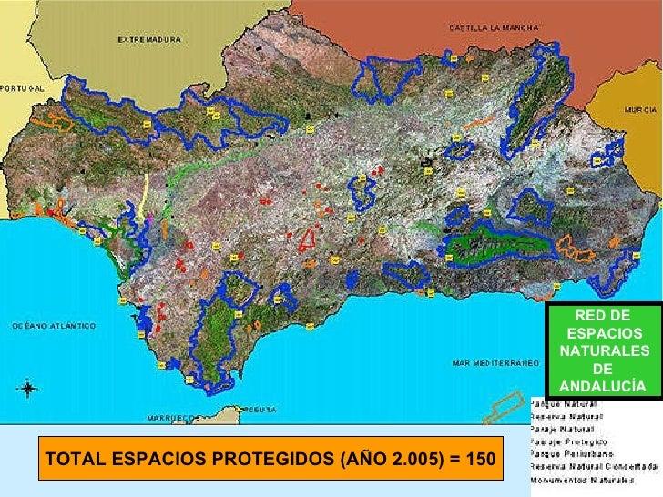 RED DE  ESPACIOS NATURALES DE  ANDALUCÍA   TOTAL ESPACIOS PROTEGIDOS (AÑO 2.005) = 150