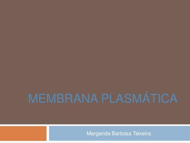 MEMBRANA PLASMÁTICA Margarida Barbosa Teixeira