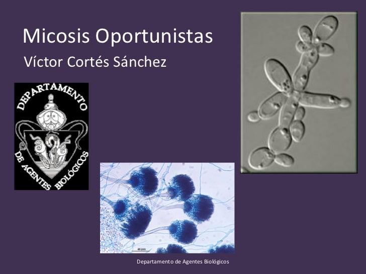 Micosis OportunistasVíctor Cortés Sánchez                Departamento de Agentes Biológicos
