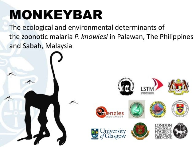 MONKEYBARThe ecological and environmental determinants ofthe zoonotic malaria P. knowlesi in Palawan, The Philippinesand S...