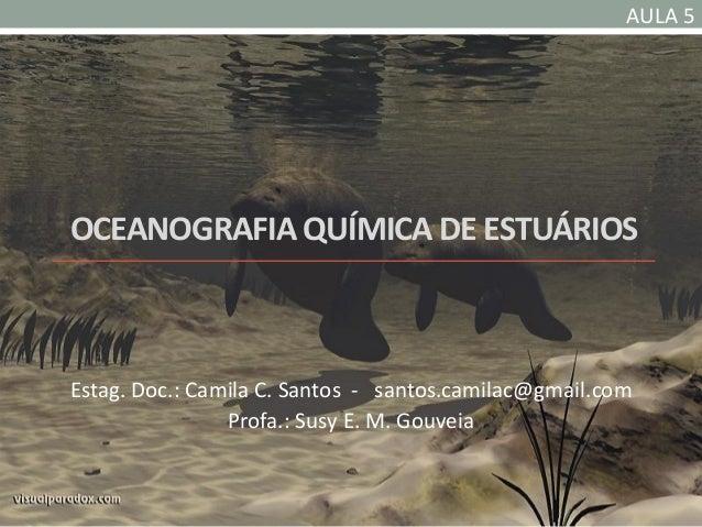 AULA 5OCEANOGRAFIA QUÍMICA DE ESTUÁRIOSEstag. Doc.: Camila C. Santos - santos.camilac@gmail.com                Profa.: Sus...
