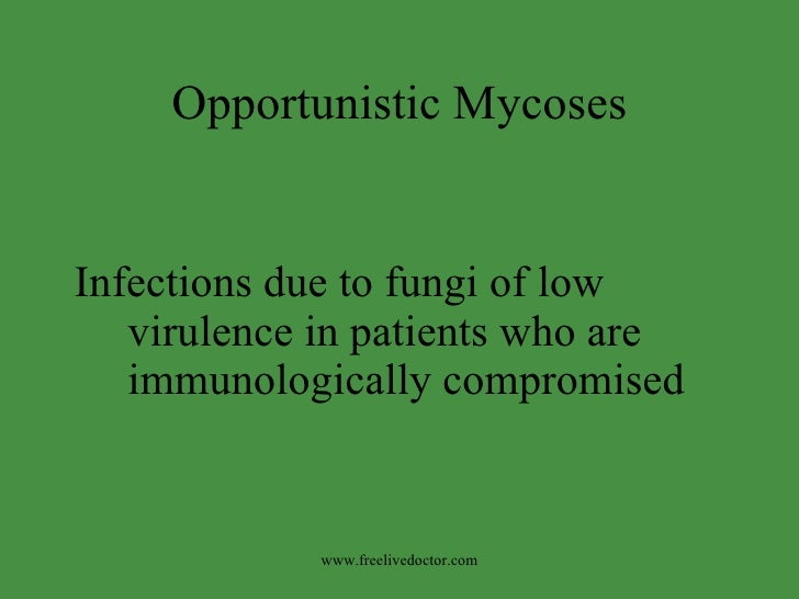Opportunistic Mycoses <ul><li>Infections due to fungi of low virulence in patients who are immunologically compromised </l...