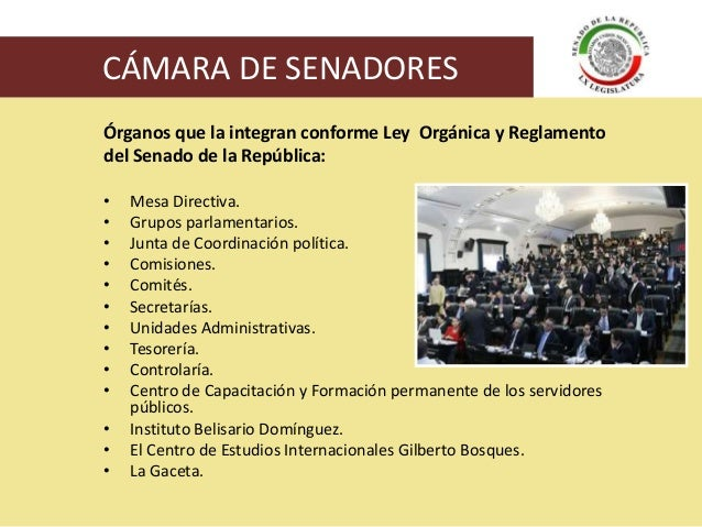 Organizaci n del congreso de la uni n for La camara de senadores
