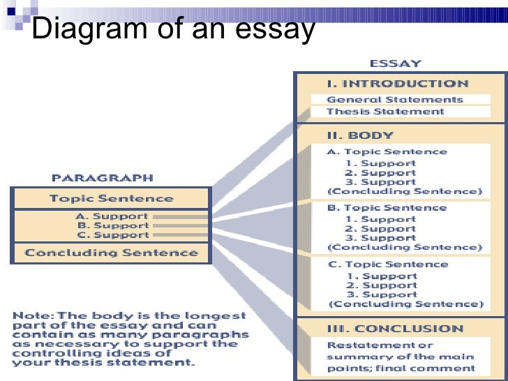 structure of an essay esl