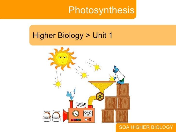 Photosynthesis Higher Biology > Unit 1 SQA HIGHER BIOLOGY