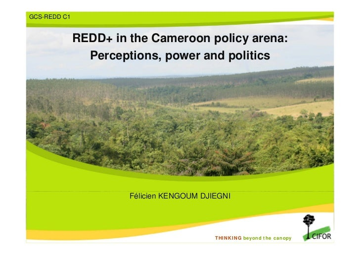 GCS-REDD C1              REDD+ in the Cameroon policy arena:                Perceptions, power and politics               ...