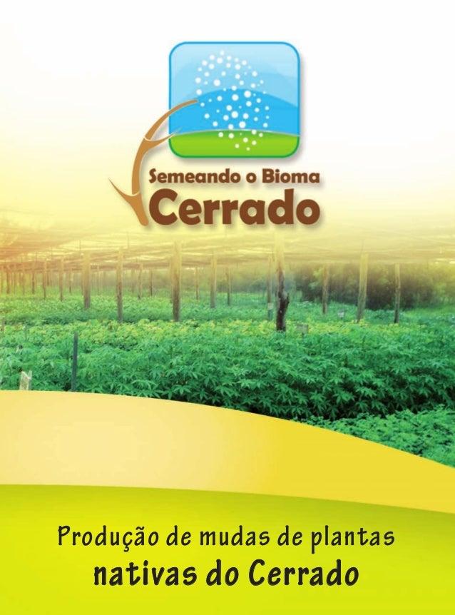 www.rededesementesdocerrado.org.br Produção de mudas de plantas nativas do Cerrado Projeto Semeando o Bioma Cerrado Edifíc...