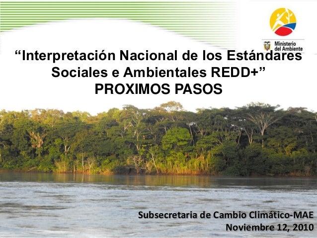 """""""Interpretación Nacional de los Estándares Sociales e Ambientales REDD+"""" PROXIMOS PASOS Subsecretaria de Cambio Climático-..."""