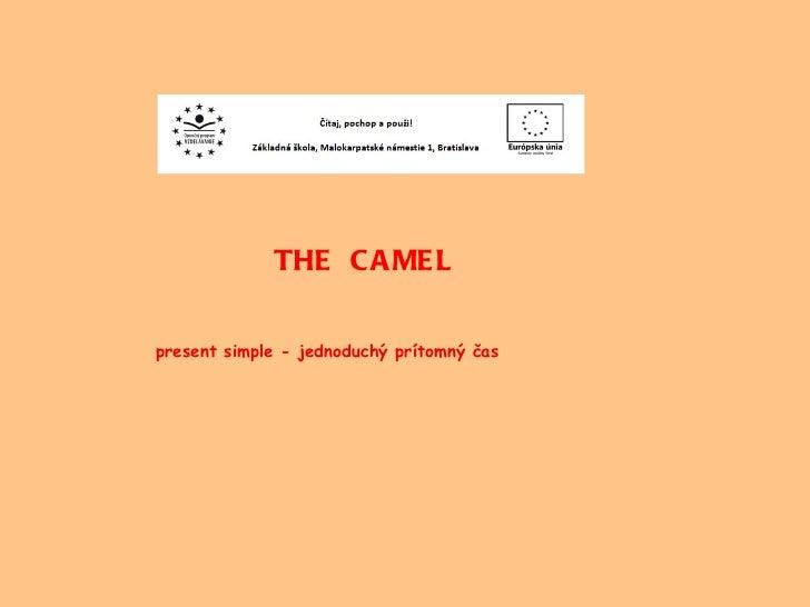 THE  CAMEL present simple - jednoduchý prítomný čas
