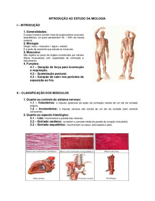 INTRODUÇÃO AO ESTUDO DA MIOLOGIAI – INTRODUÇÃO    1. Generalidades:    O corpo humano contém mais de quatrocentos músculos...