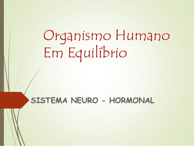 Organismo Humano Em Equilíbrio SISTEMA NEURO - HORMONAL