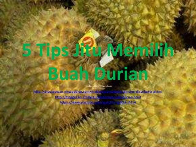 5 Tips Jitu Memilih  Buah Durian  Tautan Rekomendasi  http://diposeowan.mywapblog.com/maidaniipancakedurian-com-distributo...